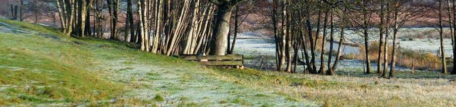 Auwiesen nahe Ornum im Winter