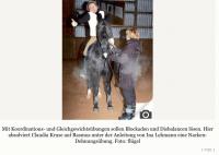 Pferd und Reiter in Harmonie